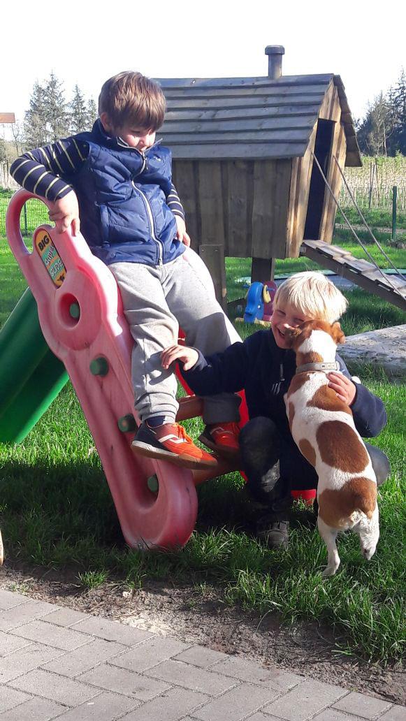 Kinder-Rutsche-Hund