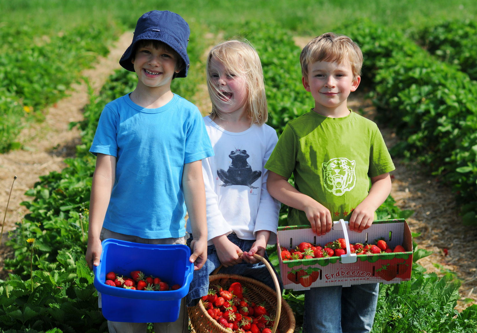 Erdbeercrew