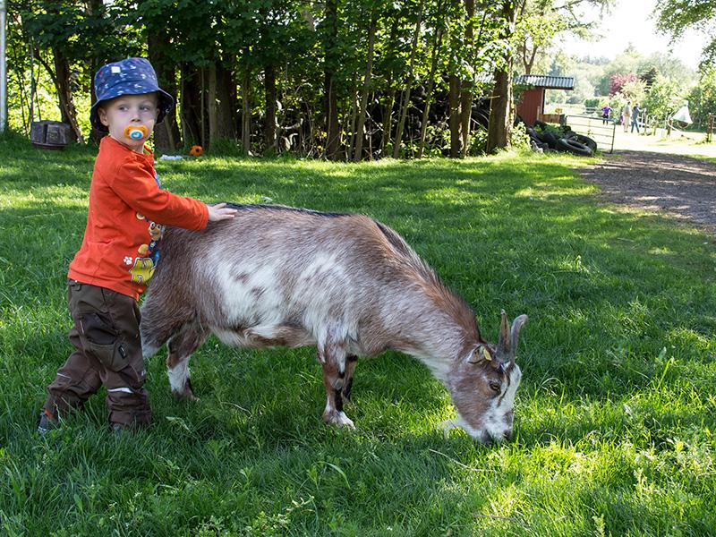 Kind mit Ziege